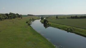 Τοπ άποψη του ποταμού, που περιβάλλεται από τα δέντρα και τα λιβάδια στις τράπεζές του, άποψη από την κορυφή - κεραία φιλμ μικρού μήκους