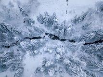 Τοπ άποψη του ποταμού χειμερινών βουνών που περιβάλλεται από τα δέντρα και τις τράπεζες στοκ φωτογραφία