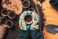 Τοπ άποψη του χώματος εκμετάλλευσης ανθοκόμων flowerpot στοκ εικόνες