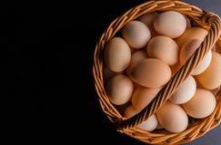 τοπ άποψη των αυγών στην ομάδα κύπελλων, υγιής, συστατικό, ζωή, μακροεντολή, γεύμα, φύση, νέος, θρεπτική, αντικείμενο, παλαιός, ο Στοκ Εικόνες