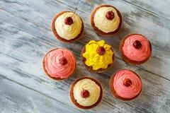 Τοπ άποψη των cupcakes στοκ εικόνες με δικαίωμα ελεύθερης χρήσης