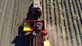 Τοπ άποψη Aero Αγροτικά μηχανήματα που συγκομίζουν τις φρέσκες οργανικές πατάτες σε έναν γεωργικό τομέα συνδεμένος με ένα τρακτέρ απόθεμα βίντεο