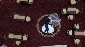 Τοπ γαμήλιο πορτρέτο των όμορφων μοντέρνων newlyweds που αγκαλιάζουν στο κόκκινο χαλί στο ξενοδοχείο πολυτελείας φιλμ μικρού μήκους