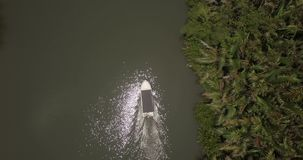 Τοπ κηφήνας άποψης που μεγεθύνει μέσα σε λίγη άσπρη βάρκα που ταξιδεύει κατά μήκος της όμορφης ήρεμης όχθης ποταμού ζουγκλών με τ απόθεμα βίντεο