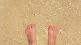 Τοπ πρώτη άποψη προσώπων των αρσενικών ποδιών που στέκονται σε μια αμμώδη παραλία μεταξύ των καταβρέχοντας κυματωγών Βλέποντας άμ απόθεμα βίντεο