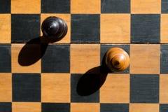 Τοπ στάση επισκόπων σκακιού άποψης σε μια σκακιέρα με τις σκιές Στοκ εικόνες με δικαίωμα ελεύθερης χρήσης