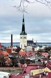 Τοπ όψη σχετικά με την παλαιά πόλη στο Ταλίν Εσθονία Στοκ εικόνα με δικαίωμα ελεύθερης χρήσης