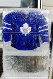 Τορόντο Maple Leafs Τζέρσεϋ στοκ εικόνα