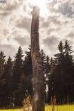 Τοτέμ Στοκ φωτογραφίες με δικαίωμα ελεύθερης χρήσης