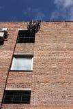 Τουβλότοιχος ενός σπιτιού με τα παράθυρα και τα κάγκελα Στοκ εικόνες με δικαίωμα ελεύθερης χρήσης