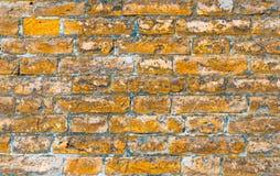 Τουβλότοιχος φιαγμένος από τούβλα στο δωμάτιο Στοκ εικόνα με δικαίωμα ελεύθερης χρήσης