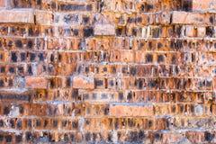 Τουβλότοιχος Στοκ Φωτογραφίες
