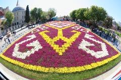 Τουλίπες μπροστά από Hagia Sophia, Ιστανμπούλ Στοκ φωτογραφίες με δικαίωμα ελεύθερης χρήσης