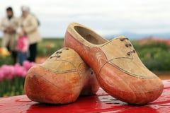 τουλίπες παπουτσιών ξύλι Στοκ εικόνες με δικαίωμα ελεύθερης χρήσης