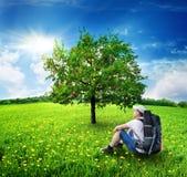 Τουρίστας και Apple-δέντρο Στοκ φωτογραφία με δικαίωμα ελεύθερης χρήσης