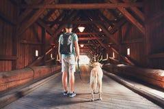 Τουρίστας με το σκυλί του μέσα της καλυμμένης γέφυρας Στοκ Εικόνες