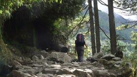 Τουρίστας με backpack φιλμ μικρού μήκους