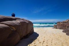 Τουρίστας με backpacks σε μια μεγάλη πέτρα και την απόλαυση της θέας θάλασσας. Εθνικό πάρκο του Ben Boyd, Αυστραλία Στοκ εικόνες με δικαίωμα ελεύθερης χρήσης