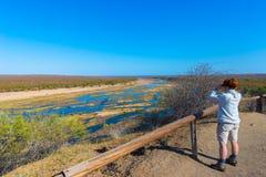 Τουρίστας που εξετάζει το πανόραμα με διοφθαλμικό από την άποψη πέρα από το φυσικού και ζωηρόχρωμου τοπίο ποταμών Olifants, με τη Στοκ Εικόνες
