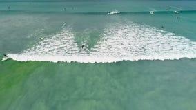 Τουρίστας που κάνει σερφ στη θάλασσα 4k απόθεμα βίντεο