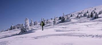 Τουρίστας που κοιτάζει στο καταπληκτικό χειμερινό τοπίο στοκ φωτογραφίες με δικαίωμα ελεύθερης χρήσης
