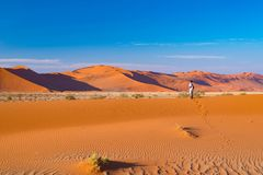 Τουρίστας που περπατά στους αμμόλοφους άμμου σε Sossusvlei, έρημος Namib, εθνικό πάρκο Namib Naukluft, Ναμίμπια Διακινούμενοι άνθ Στοκ Εικόνες