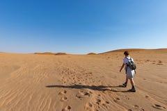 Τουρίστας που περπατά στους αμμόλοφους άμμου σε Sossusvlei, έρημος Namib, εθνικό πάρκο Namib Naukluft, Ναμίμπια Διακινούμενοι άνθ Στοκ Εικόνα