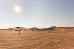 Τουρίστας που περπατά στους αμμόλοφους άμμου σε Sossusvlei, έρημος Namib, εθνικό πάρκο Namib Naukluft, Ναμίμπια Διακινούμενοι άνθ Στοκ Φωτογραφίες