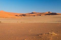 Τουρίστας που περπατά στους φυσικούς αμμόλοφους Sossusvlei, έρημος Namib, εθνικό πάρκο Namib Naukluft, Ναμίμπια Φως απογεύματος ρ Στοκ φωτογραφία με δικαίωμα ελεύθερης χρήσης