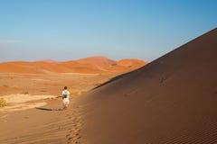 Τουρίστας που περπατά στους φυσικούς αμμόλοφους Sossusvlei, έρημος Namib, εθνικό πάρκο Namib Naukluft, Ναμίμπια Φως απογεύματος ρ Στοκ φωτογραφίες με δικαίωμα ελεύθερης χρήσης