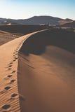 Τουρίστας που περπατά στους φυσικούς αμμόλοφους Sossusvlei, έρημος Namib, εθνικό πάρκο Namib Naukluft, Ναμίμπια Περιπέτεια και εξ Στοκ εικόνες με δικαίωμα ελεύθερης χρήσης