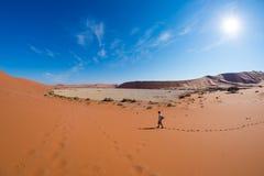 Τουρίστας που περπατά στους φυσικούς αμμόλοφους Sossusvlei, έρημος Namib, εθνικό πάρκο Namib Naukluft, Ναμίμπια Περιπέτεια και εξ Στοκ Φωτογραφία
