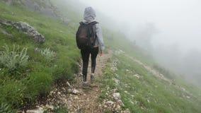 Τουρίστας που χάνεται στην ομίχλη απόθεμα βίντεο