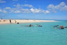 Τουρίστας ταξιδιού ημέρας που κολυμπά με αναπνευτήρα στην κοραλλιογενή νήσο michaelmas με την όμορφη λεπτή άσπρη άμμο και το τυρκ Στοκ εικόνα με δικαίωμα ελεύθερης χρήσης