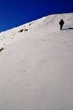 τουρίστας χιονιού βουν&om Στοκ εικόνες με δικαίωμα ελεύθερης χρήσης