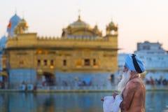 Τουρίστες και προσκυνητής που περπατούν μέσα στο χρυσό ναό σύνθετο σε Amritsar, το Punjab, την Ινδία, το πιό ιερές εικονίδιο και  Στοκ φωτογραφία με δικαίωμα ελεύθερης χρήσης