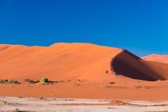Τουρίστες που αναρριχούνται στους φυσικούς αμμόλοφους άμμου σε Sossusvlei, το εθνικό πάρκο Namib Naukluft, τον καλύτερο τουρίστα  Στοκ εικόνες με δικαίωμα ελεύθερης χρήσης