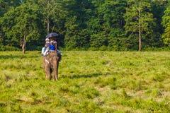 Τουρίστες που επισκέπτονται τη ζούγκλα στις πλάτες των ελεφάντων Στοκ φωτογραφίες με δικαίωμα ελεύθερης χρήσης