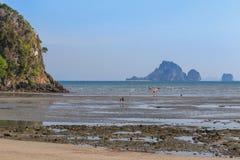 Τουρίστες που περπατούν κατά τη διάρκεια της χαμηλής παλίρροιας στην παραλία aonang, Krabi, Ταϊλάνδη Στοκ εικόνες με δικαίωμα ελεύθερης χρήσης
