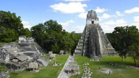 Τουρίστες στο ναό ιαγουάρων σε Tikal Γουατεμάλα απόθεμα βίντεο