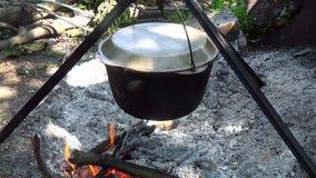Τουρίστες τροφίμων στρατόπεδων Μαγειρευμένος σε μια πυρκαγιά Το χέρι ρίχνει τους κλάδους στην πυρκαγιά φιλμ μικρού μήκους