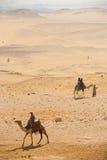 τουρίστες giza ερήμων καμηλώ&nu Στοκ Φωτογραφία