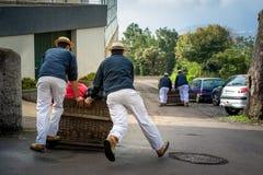 Τουριστικό έλκηθρο έλξης του Φουνκάλ προς τα κάτω Στοκ εικόνες με δικαίωμα ελεύθερης χρήσης