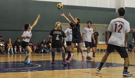 Τουρκικό πρωτάθλημα Korfball Στοκ Φωτογραφία