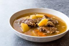 Τουρκικό Kuzu Haslama/Stew αρνιών με τις πατάτες και το καρότο Στοκ Εικόνες