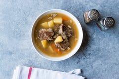 Τουρκικό Kuzu Haslama/Stew αρνιών με τις πατάτες και το καρότο Στοκ εικόνα με δικαίωμα ελεύθερης χρήσης