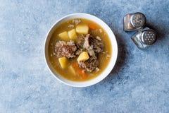 Τουρκικό Kuzu Haslama/Stew αρνιών με τις πατάτες και το καρότο Στοκ Φωτογραφίες