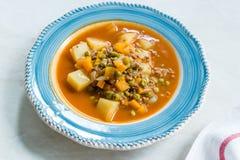 Τουρκικό Stew πράσινων μπιζελιών τροφίμων/μαγειρευμένος κιμάς Etli Bezelye στοκ εικόνες