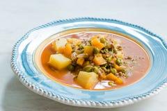 Τουρκικό Stew πράσινων μπιζελιών τροφίμων/μαγειρευμένος κιμάς Etli Bezelye στοκ φωτογραφία με δικαίωμα ελεύθερης χρήσης