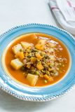 Τουρκικό Stew πράσινων μπιζελιών τροφίμων/μαγειρευμένος κιμάς Etli Bezelye στοκ φωτογραφία